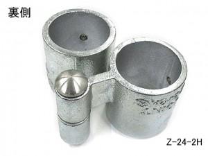 Z-24-2H_2_patan