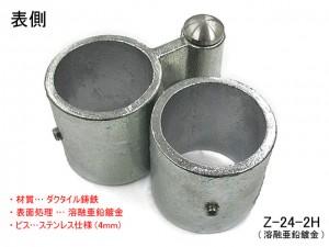 Z-24-2H_patan_1